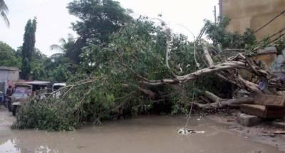 Karachi rains related deaths rise drastically