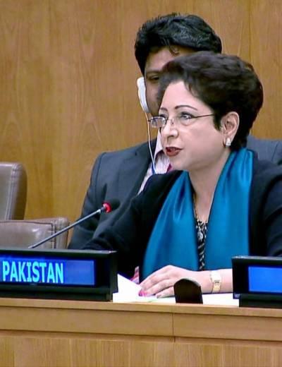 Pakistan raises Kashmir issue at the highest level in UN