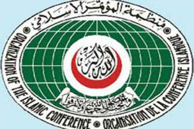 OIC summons special session over Rohingya Muslims plight