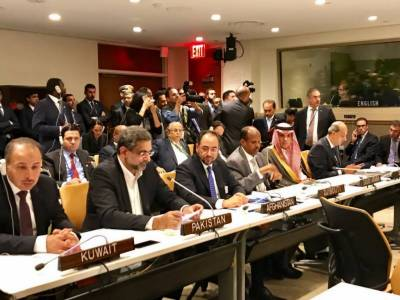 Pakistan takes a leading role on Rohingya Muslims issue in OIC contact group