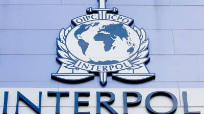 Pakistan to work with Interpol for regional security