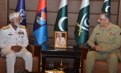 Pakistan Navy Chief calls on CJCSC