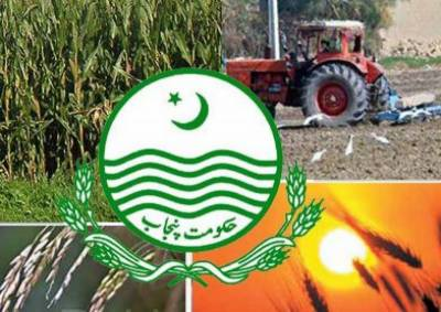 Interest free agri loans under Kissan Package in Punjab
