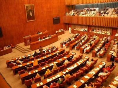 Senate adopts resolution against appointment of disqualified person as party leader