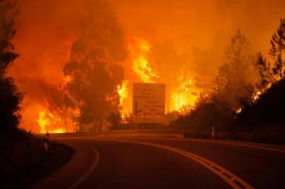 Nine killed in Spain, Portugal as wildfires fanned by hurricane