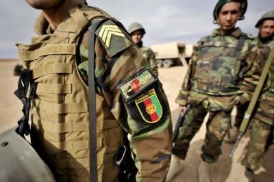 Afghan Taliban kill 800 Afghan Army soldiers