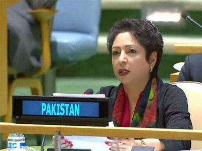 UN-Pakistani envoy raises India's LoC violations with President of UNGA