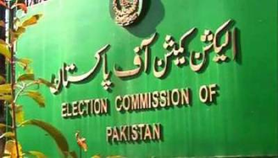 ECP discusses national census, new delimitations