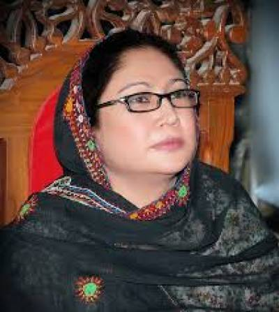 Faryal Talpur rebuts land-grabbing blame