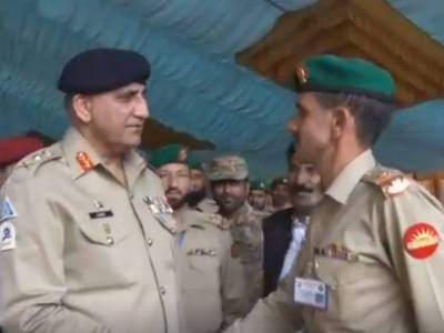 COAS appreciates Mujahid Force at LoC
