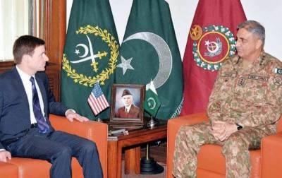 US Ambassador David Halle meets COAS General Qamar Bajwa