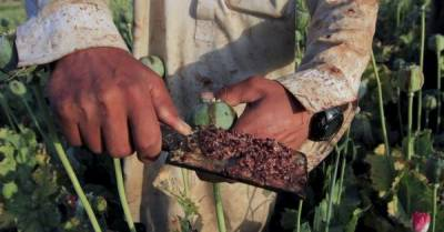 US strikes strategy on Afghan drug labs bound to fail: Experts