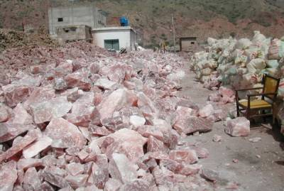 Punjab Food Authority asks salt processors to follow reform process