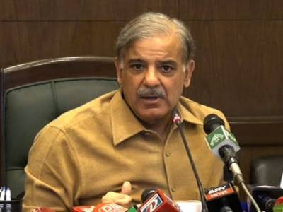 Punjab govt introduced reforms in various sectors: Shahbaz