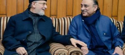 Asif Zardari calls on Dr Tahirul Qadri, assures of his cooperation