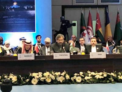 Pakistan raises Kashmir issue along with Palestine at the OIC conference