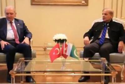 CM Punjab, Istanbul Mayor discuss to boost cooperation in diverse sectors