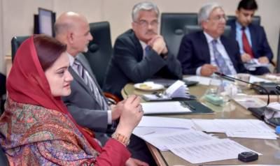 Marriyum stresses to promote Quaid's ideas, views