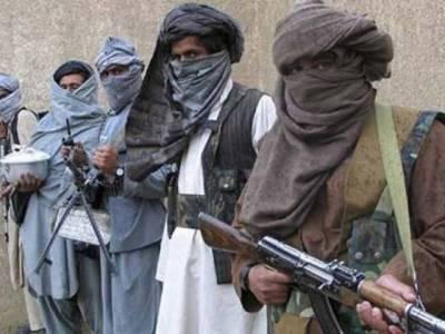 14 Afghan Taliban members killed in Helmand operation