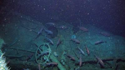 Australian WW1-era naval submarine HMAS AE-1 found