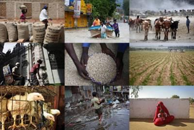 Food security in ME deteriorating: UN