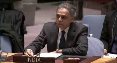 India hits out at Pakistan - China in UN Security Council