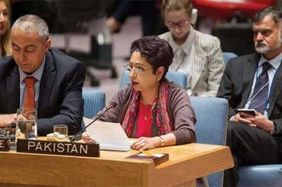 Pakistan does not get pressurised by threats: Lodhi tells US categorically
