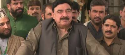 Sharif brothers won't get an NRO: Sheikh Rasheed