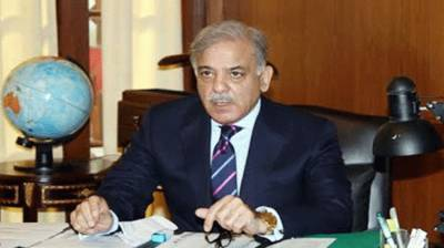 Kasur tragedy initial report presented to CM Shehbaz Sharif