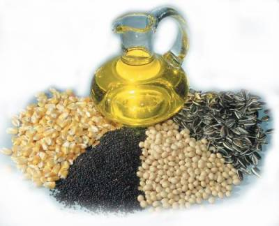 Punjab govt launches campaign for increasing oilseeds production