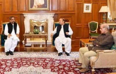 PM Shahid Khaqan, Shahbaz Sharif meet Nawaz Sharif