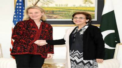 Pakistan's support critical to success of US Afghan strategy: Alice Wells