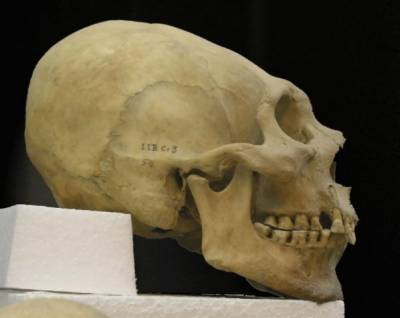At least 33 human skulls found in western Mexico, official says