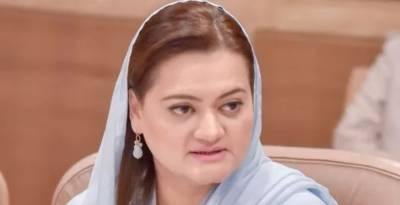 Those involved in politics of container will gain nothing: Marriyum