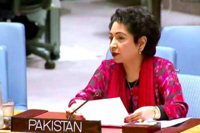 Maleeha Lodhi's befitting response to US envoy in UN