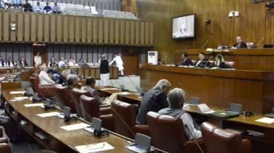 Pakistan to renegotiate FTA with China, Senate informed