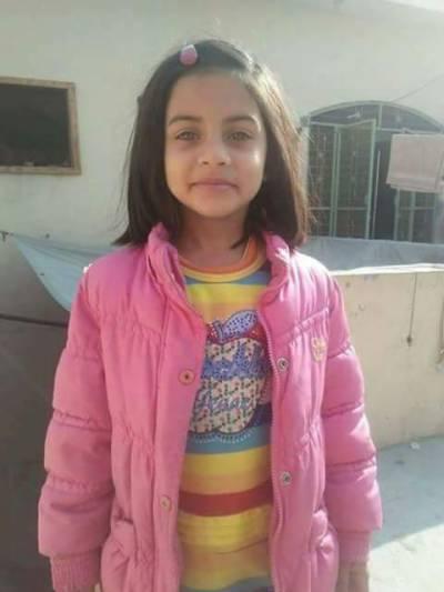 PML-N leaders appreciate Punjab govt's efforts in apprehending Zainab's murderer