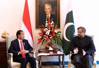 Pakistan Indonesia setup joint committee on defence cooperation