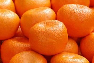 Pakistani Kinnow exporters get a good news