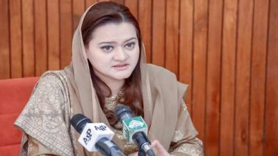 Information minister urges media persons to project Pakistan's soft image