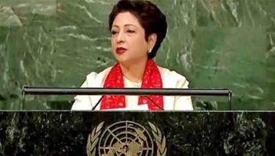 Pakistan calls for UN Security Council reforms