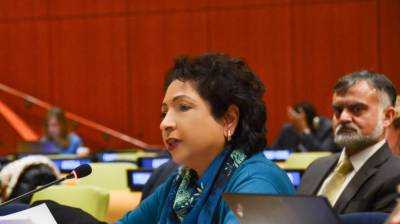 Pakistan vows to make UNSC more representative, democratic