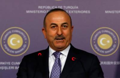 Turkey considers France's remarks on Syrian offensive 'insults'