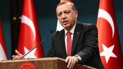 US working against interests of Turkey, Iran in northern Syria: Erdogan