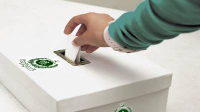 12 PPP candidates filed nomination papers for Senate elections