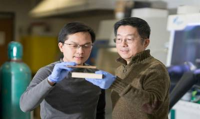 Scientists create super wood that could replace steel