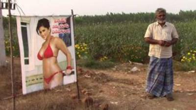 Indian farmer places Sunny Leone poster in his crops to save it from evil eye and it worked