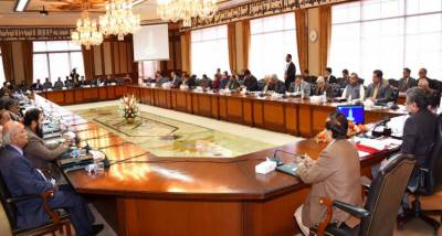 Cabinet approves LNG, POL trade agreements with Oman, Italy