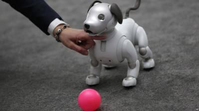 Japanese Companies Introduce New 'Companion' Robots
