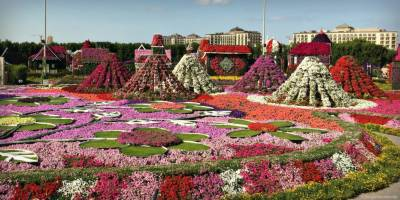 Dubai-like gardens to be created in entire Punjab
